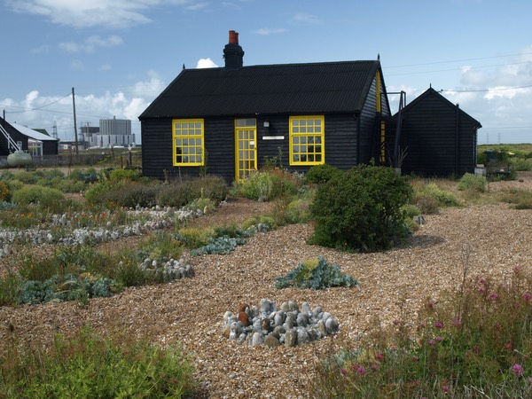 Dungeness31